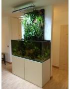 aquarium avec mur vegetal