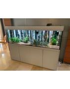 fabrication vente aquarium